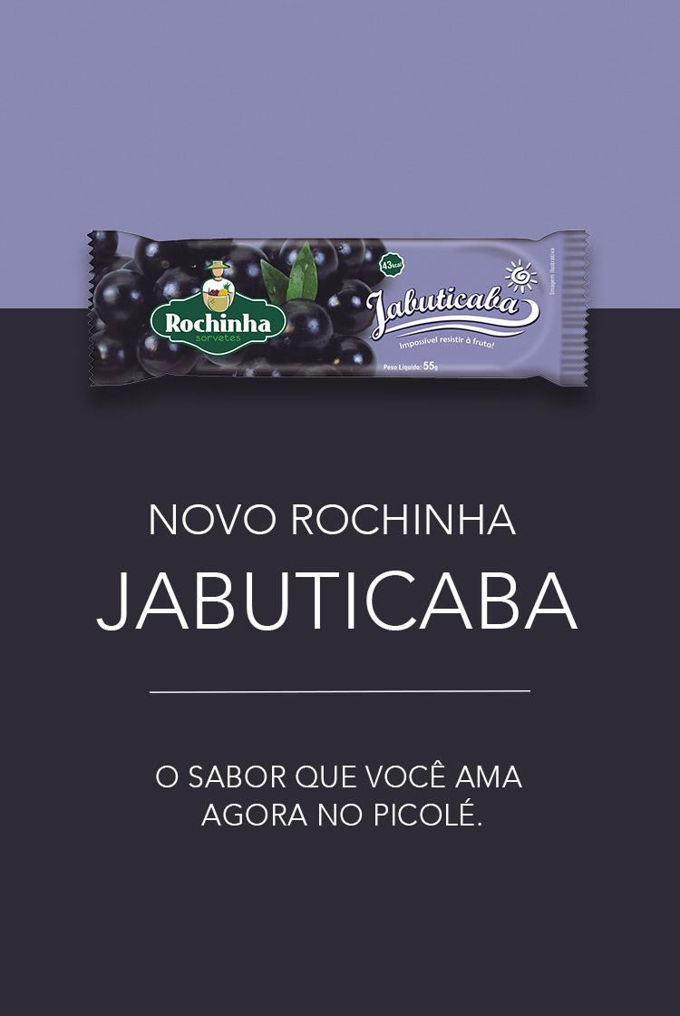 Picolé de Jabuticaba