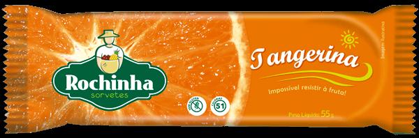 PicolÔö£┬« de Tangerina - Sorvetes Rochinha