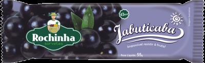 Picolé de Jabuticaba - Sorvetes Rochinha